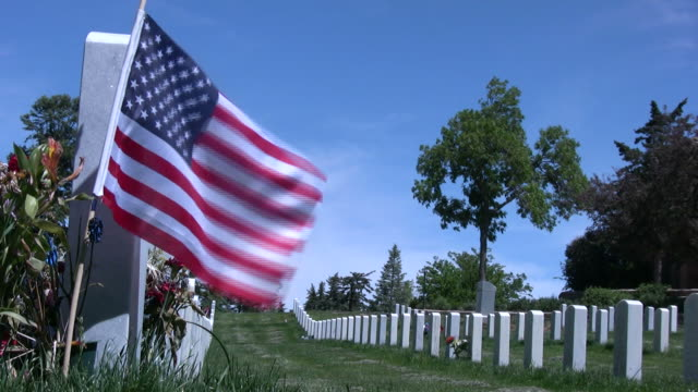 (HD1080i) Military Cemetery video