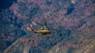 Military helicopter overflying the woodland video