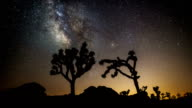 TIME LAPSE: Milky Way and Joshua Trees video