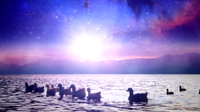 Milky Way Galaxy over lake with ducks video