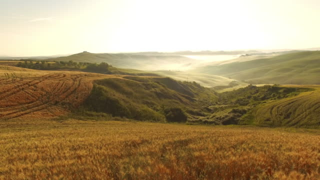 AERIAL Mist covering Tuscan countryside video