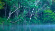 Mist on the lake in morning at Pang-ung, in Mae Hong Son video