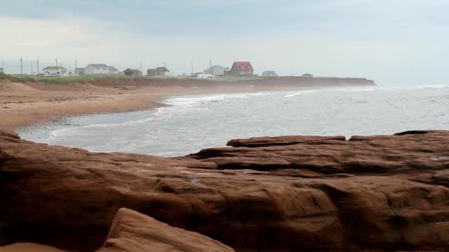 Misty beach. video
