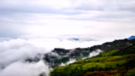 Misty fores morning on the mountain, Thailand Phu Tabberk video