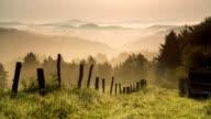 CRANE UP: Misty Hills Sunrise video