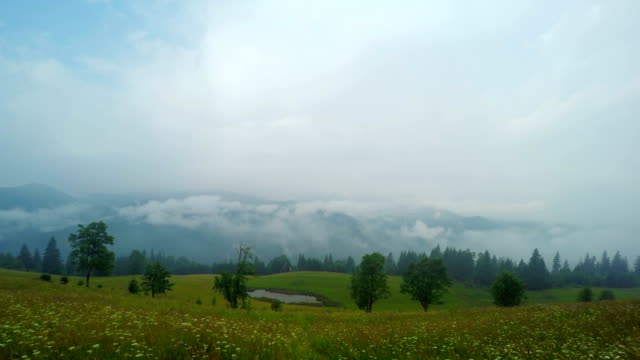 Misty Morning in Mountains. video