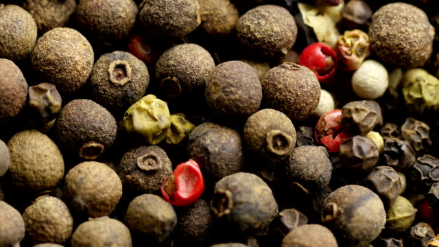 Mix of dry peppercorn. video