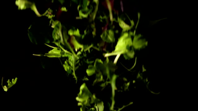 Mix salad falls on a black background, slow motion video