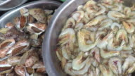 Mixed Fresh Seafood for Sale at a Local Market. video