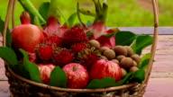 Mixed Fruit video