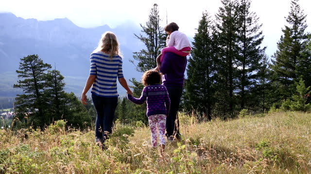Mixed race family look off from mountain meadow video