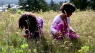 Mixed race girls explore in mountain meadow video