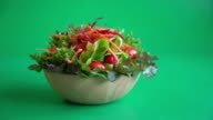 mixed vegetable salad video