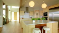 Modern contemporary kitchen with hardwood video