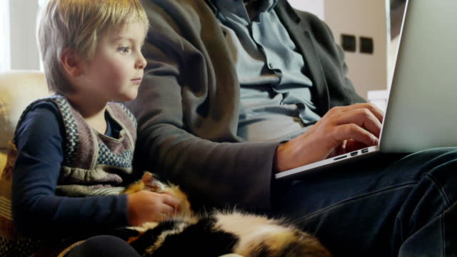 modern family little girl playing with cat while dad works with notebook on couch indoor in modern industrial house. caucasian. 4k handheld close up slow motion video shot video