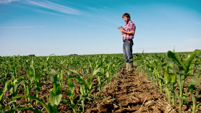 WS DS Modern Farmer With Digital Tablet video