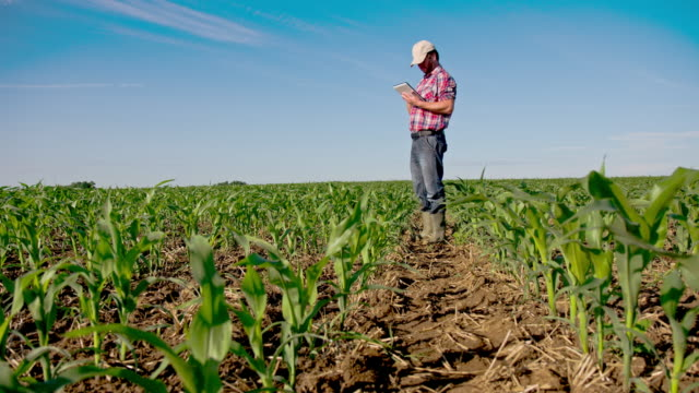 WS DS Modern Farmer Working On The Field video