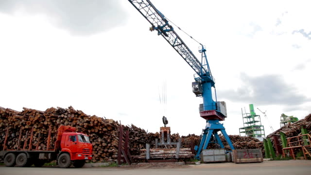 Modern lumber factory Crane load log trucks video