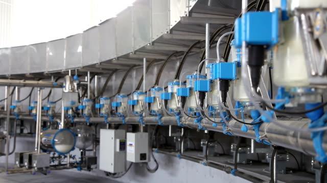 modern milking machine video