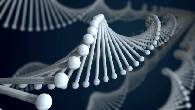 DNA Molecule Loop video