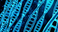 DNA molecule macro, blue string rotating on screen, biological research, genes video