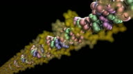 DNA Molecule Model - HD1080 video