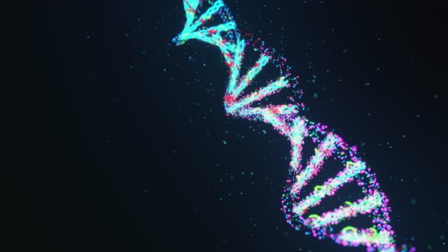DNA Molecule Model video