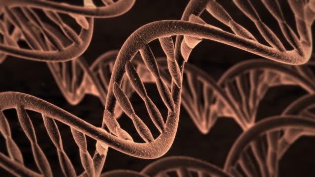 DNA Molecules video