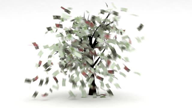 Money Tree video