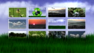 Monitors in Nature and Grass video