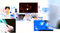 Montage fly through images of multi ethnic scientist video