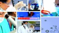 Montage of Female Medical and Scientific Researchers video