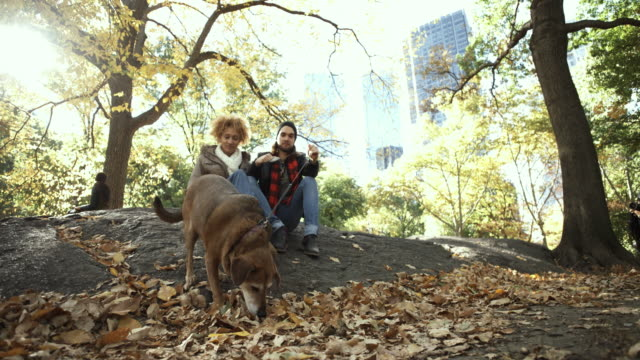 4K Montage - Young couple and Dog in Central Park New York Selfie video