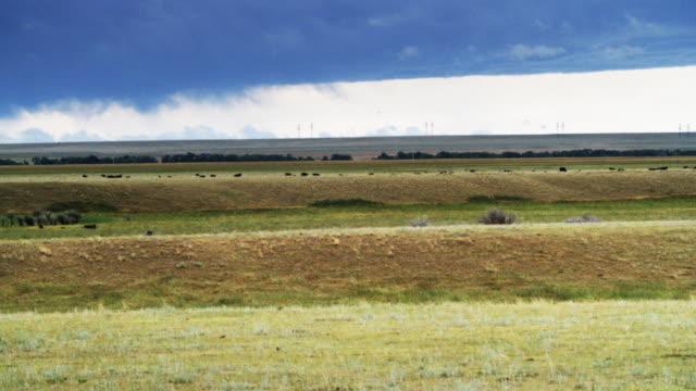 Montana Landscape video
