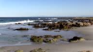 Monterey California Coastal Landscape video