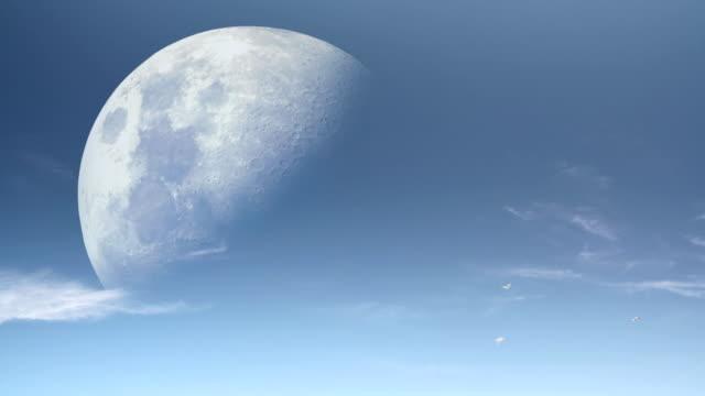 Moon Birds video