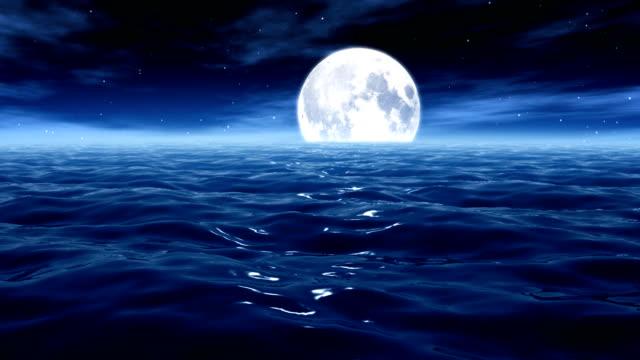 Moonlight at the sea / ocean Loop HD033 video