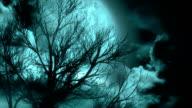 Moonlit Night video