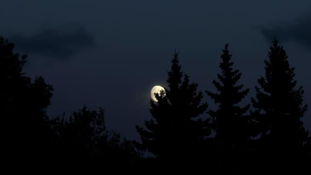 Moonrise video