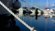HD: Mooring Lines In Marina video