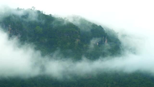 Morning fog in the mountains at Khao Kho, Phetchabun, Thailand video