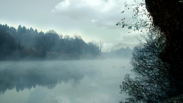 Morning fog on the river video