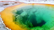 Morning Glory Pool in Yellowstone National Park video
