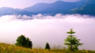 Morning Mist in Mountans. video