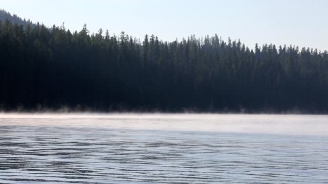 Morning Mist on a Mountain Lake video