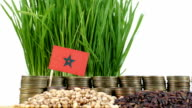 Morocco flag waving with stack of money coins and piles of wheat video