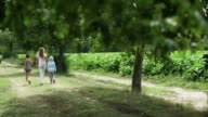 Mother and children walking in the park video