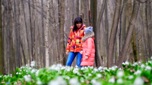 Mother and daughter are walking through the spring forest full of snowdrops , in sunny rays video