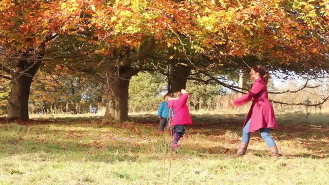 Mother And Daughter Having Autumn Fun video