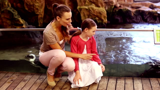 Mother and daughter looking at penguins video